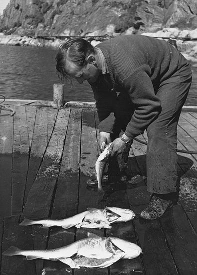 """Enligt uppgift: """"Oscar Åkermo med fångst i början av 1940-talet. I bakgrunden syns gångbron till provbryggan."""