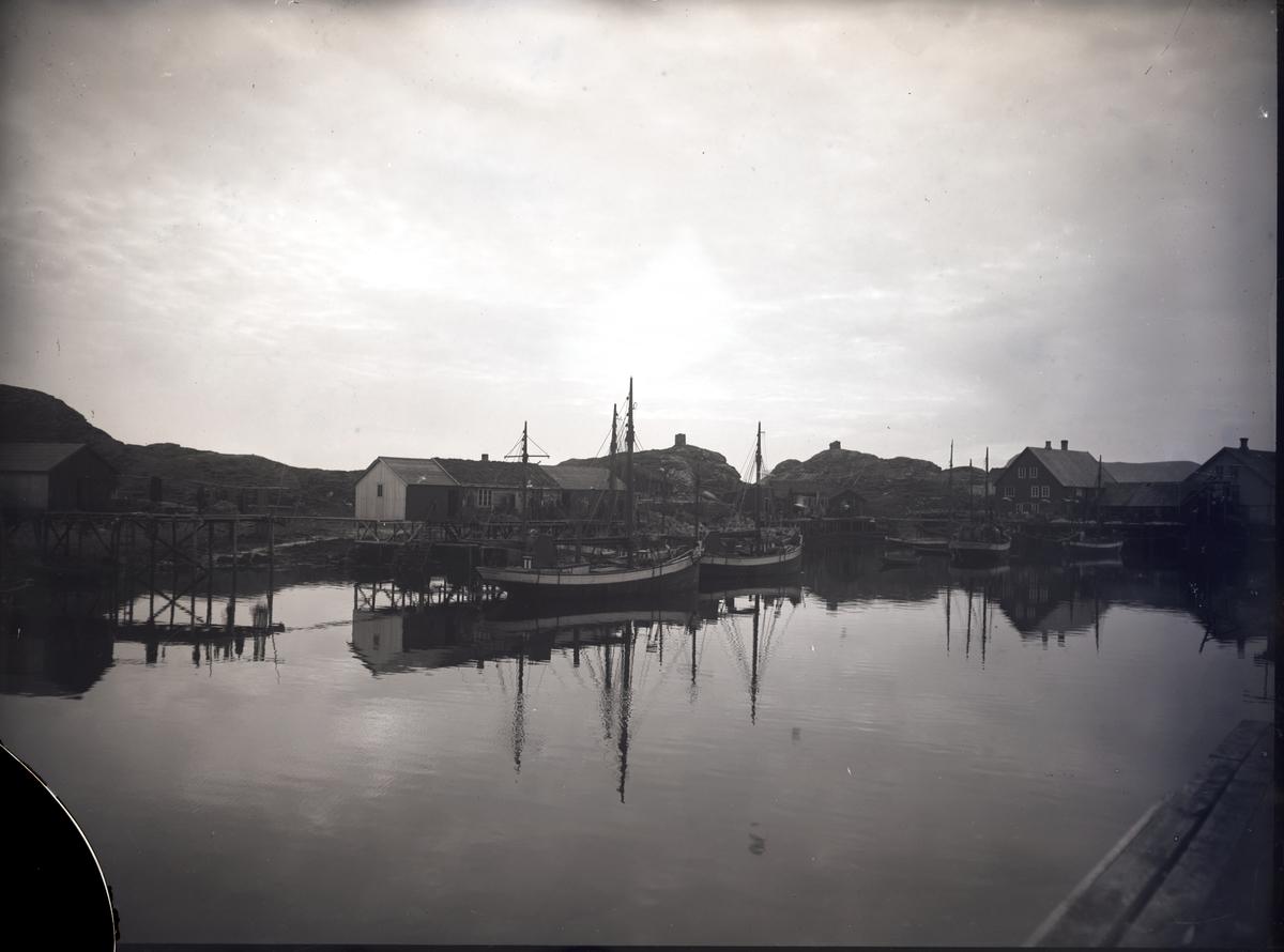 Havnemiljø