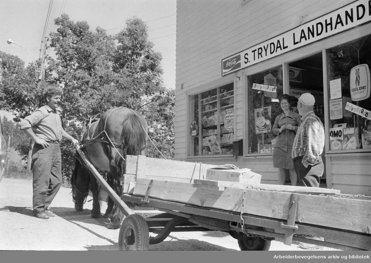 Maridalen: S. Trydals landhandel. Juli 1975