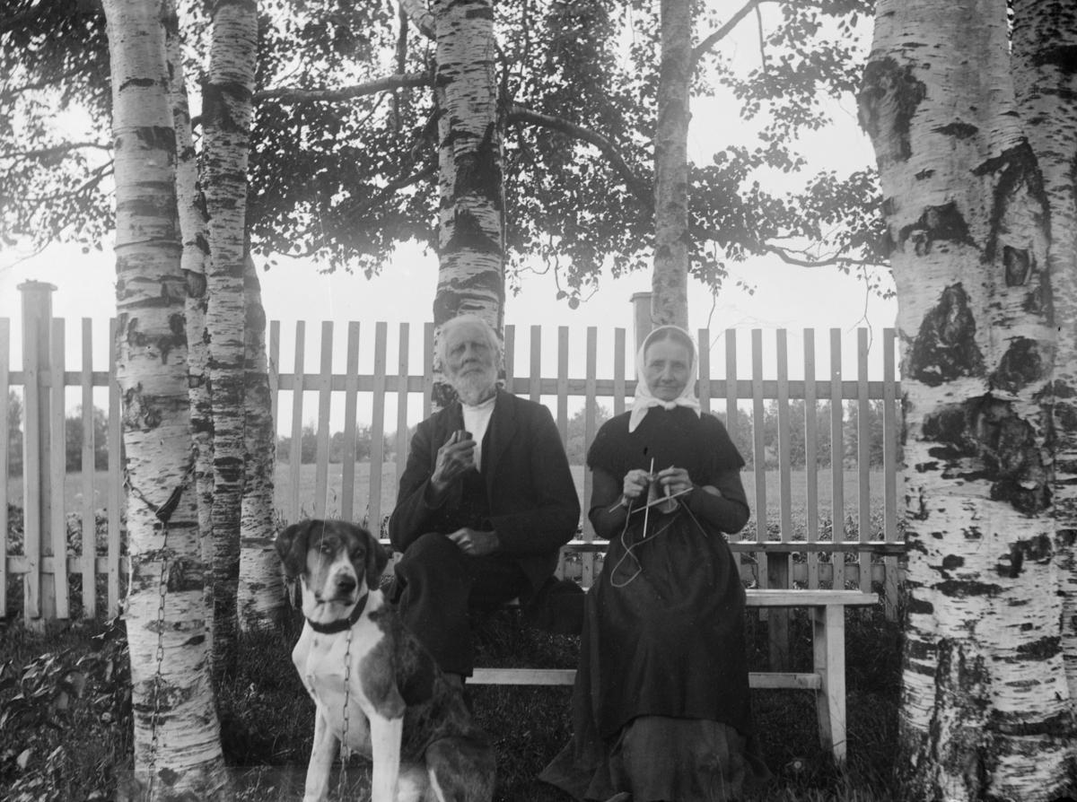 Ektepar med hund - hagebenk