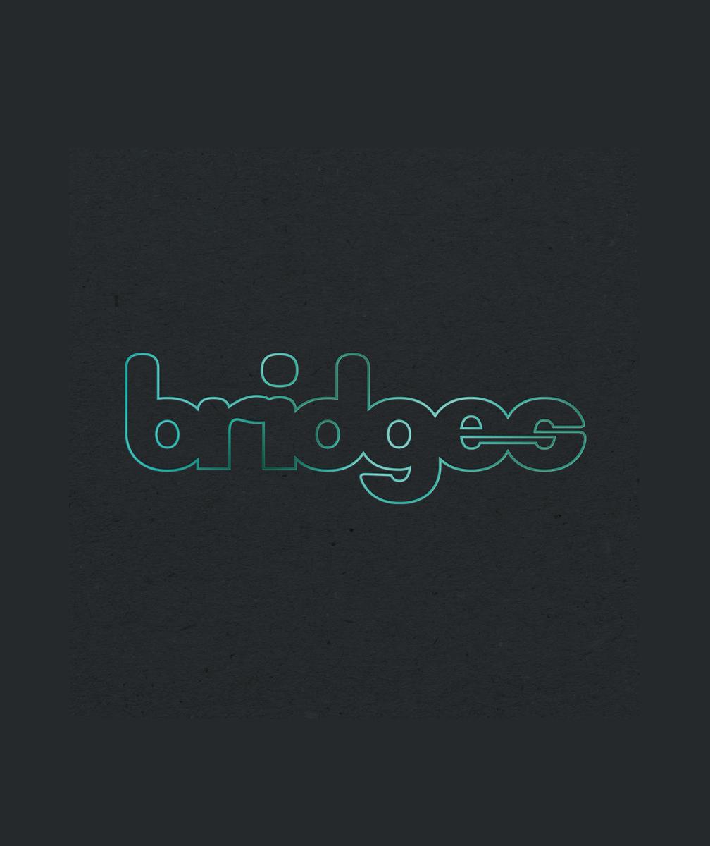 bridges_boks_hjemmeside_strre.jpg