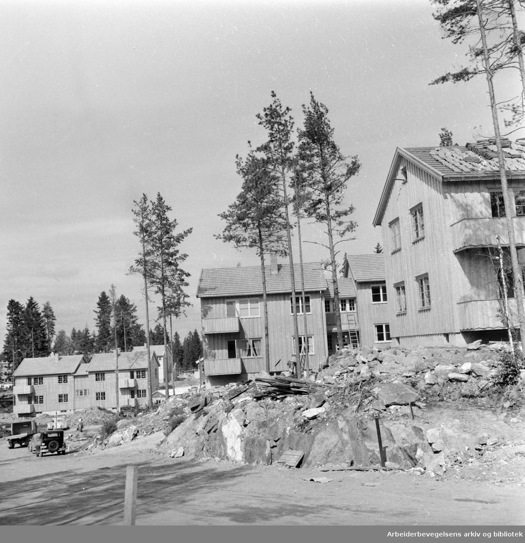 Bøler. Småhusfelt. August 1958