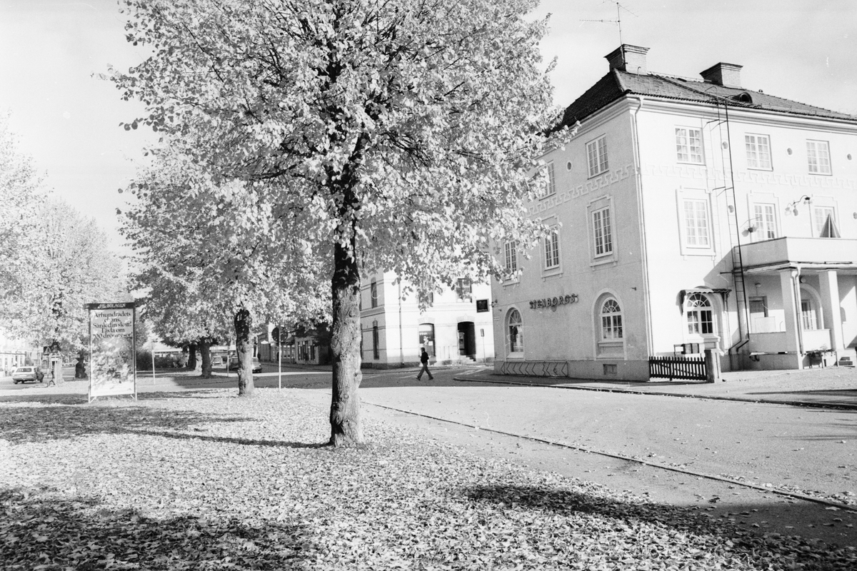 """""""Strid väntas om lindar"""", Tierp, Uppland"""