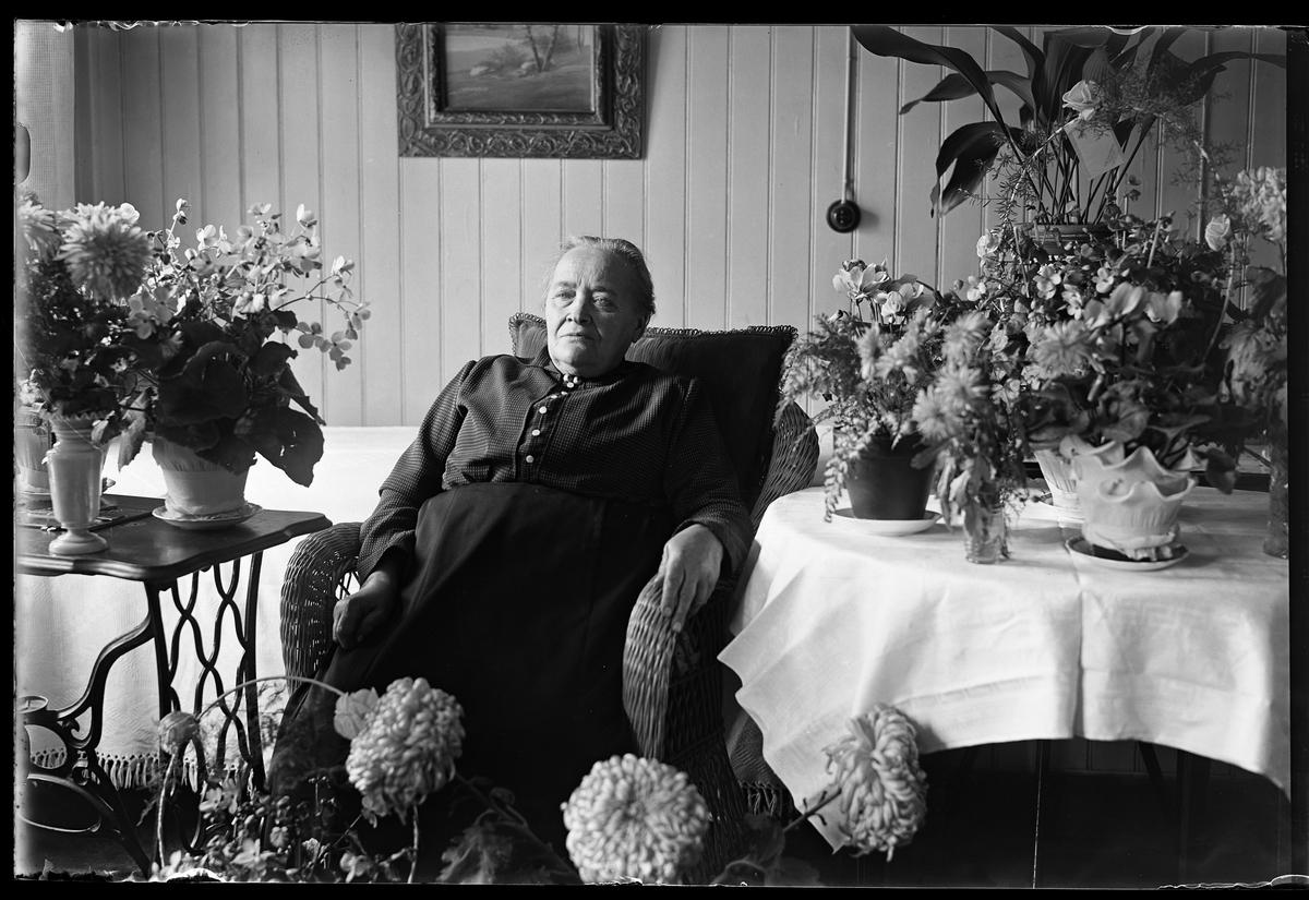 """En kvinna sitter i en korgstol och är omgiven av blommor. I fotografens anteckningar står det """"Lovisa Karlsson 80år""""."""