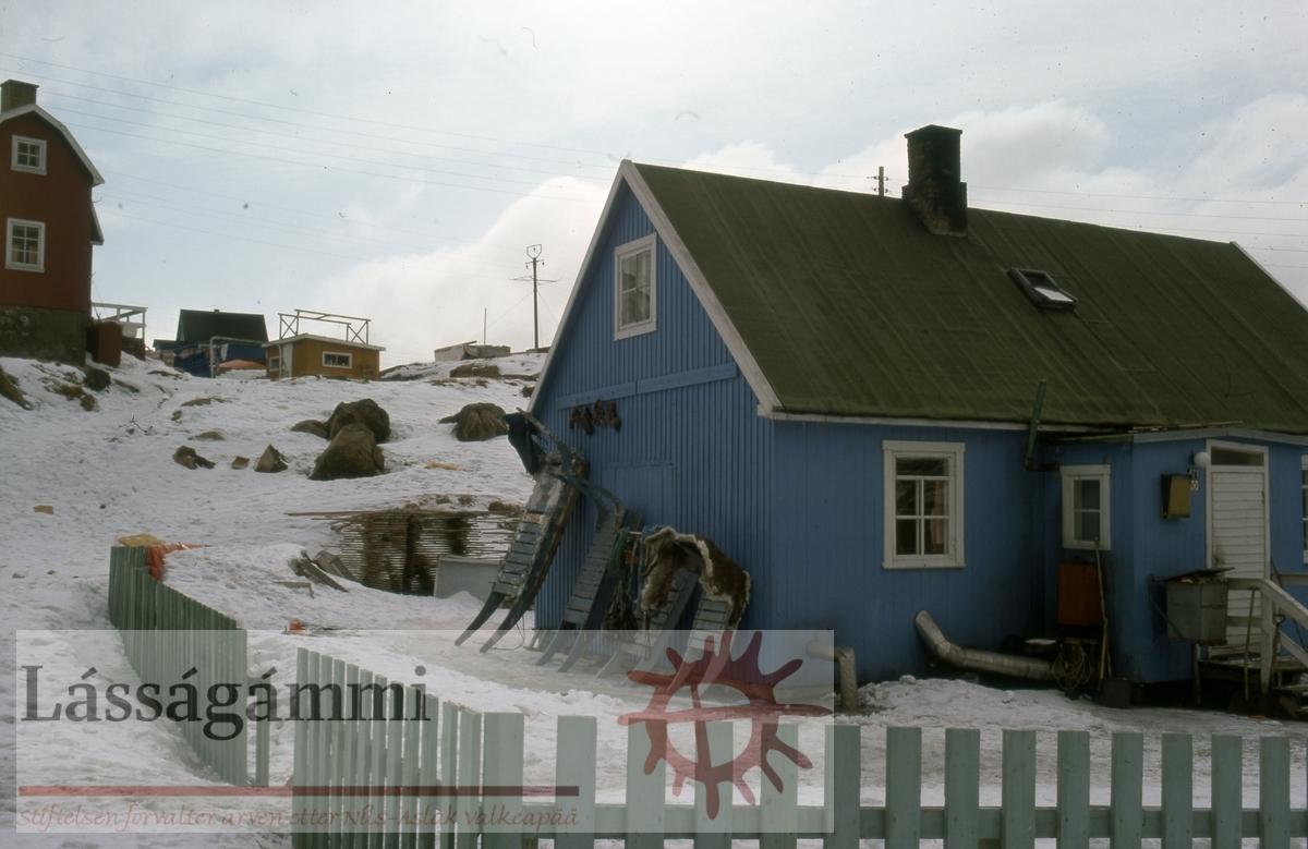 Grønland 1977