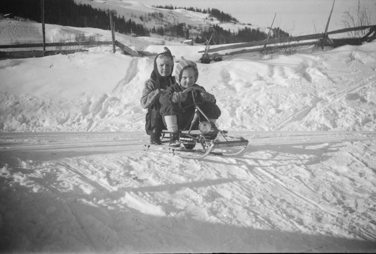 To barn på rattkjelke