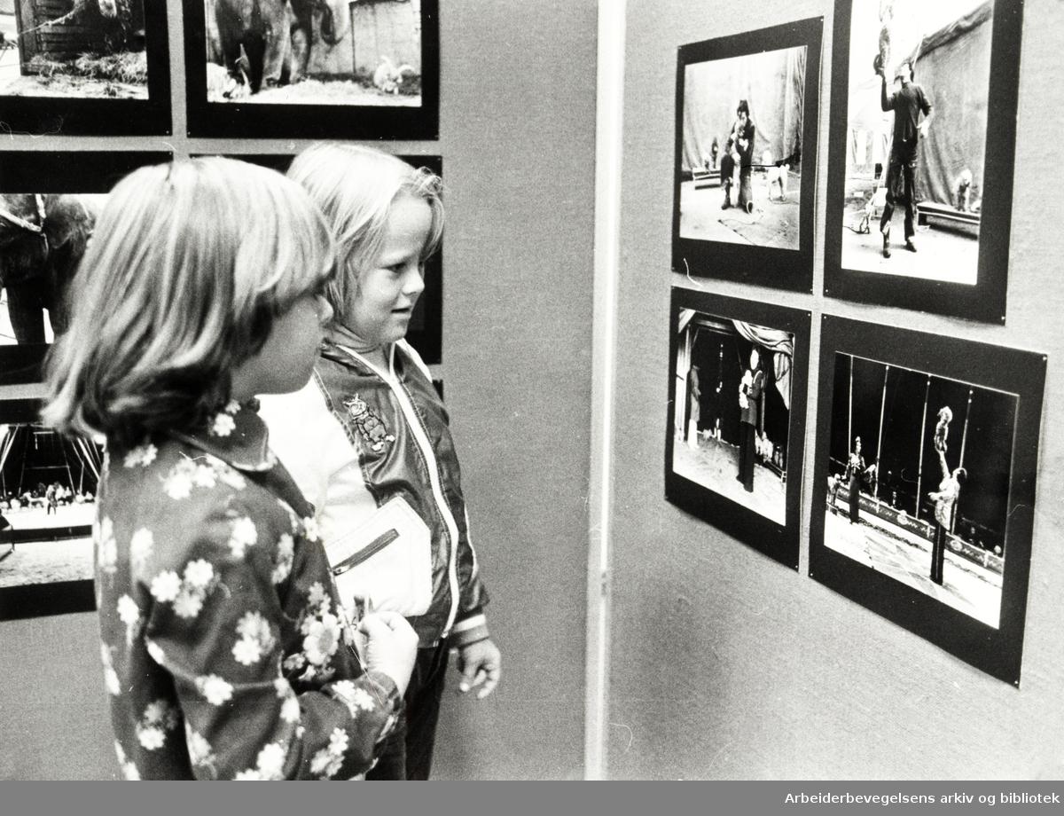 Deichmanske Bibliotek. Cathrine Stenberg og Ingjerd Dale studerer sirkusbildene på Deichman. August 1977.