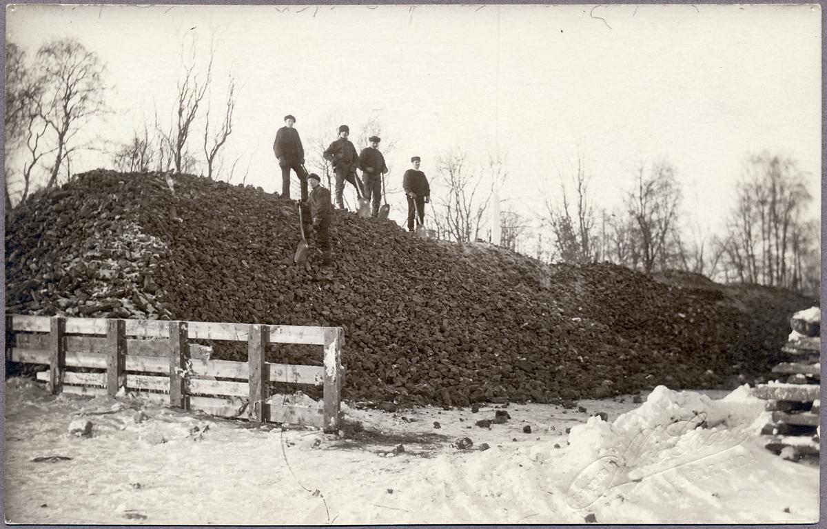 Arbetare uppställda på Statens Järnvägars stenkolsupplag i Haparanda under Första Världskriget.