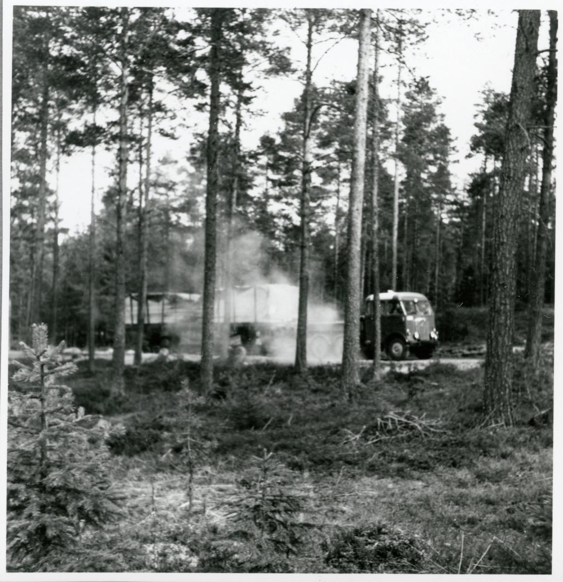 Godsvagn med brädor lastade transporteras med hjälp av vagnbjörn.