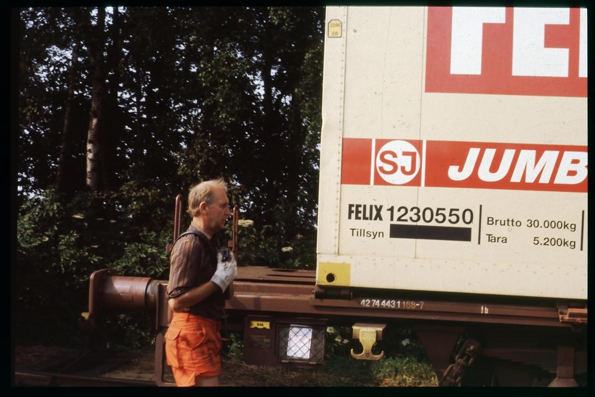 Statens Järnvägar, SJ jumbocontainer 1230550, lastad på SJ Lgjns-w 42-74-443 1 168-7.