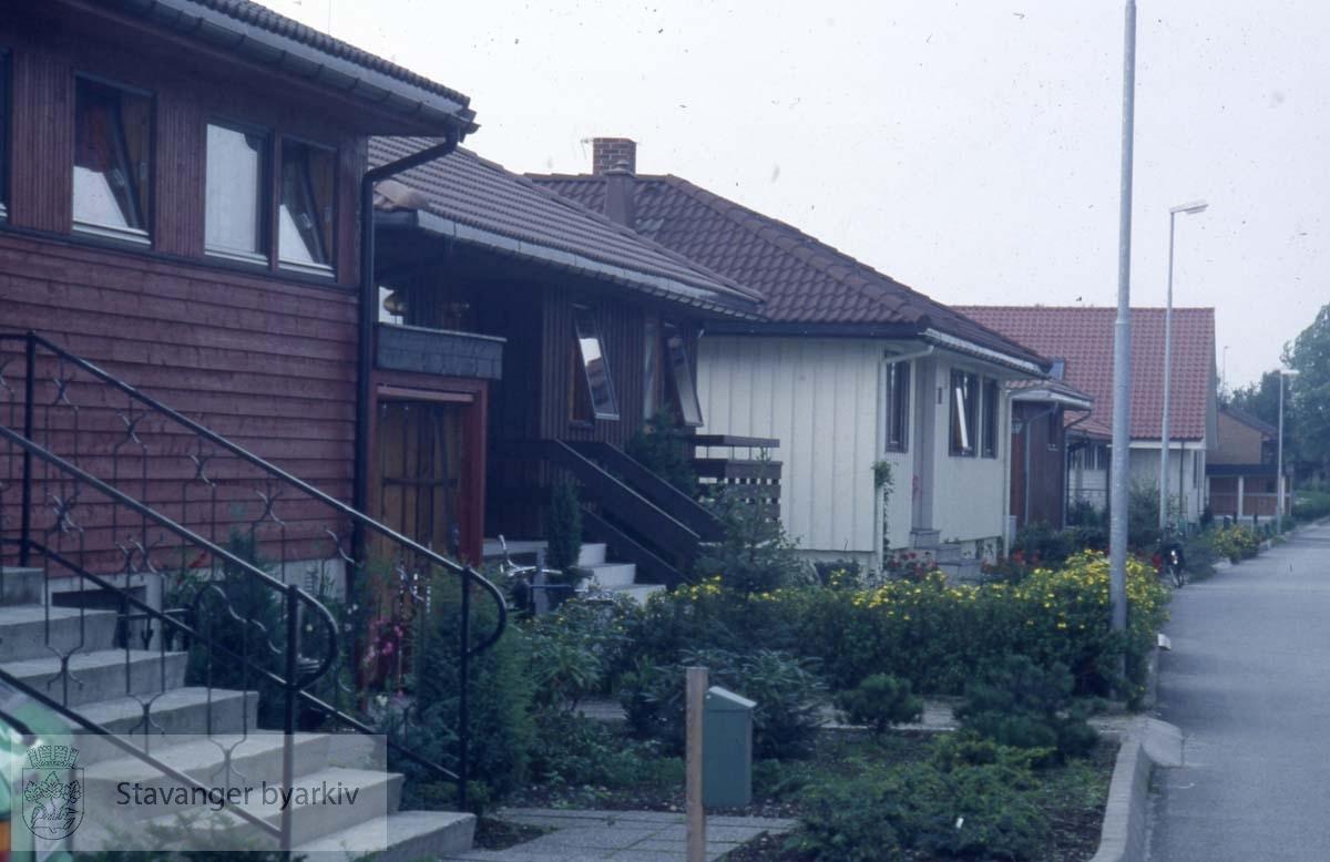 Hus i Molkeholen, Madla