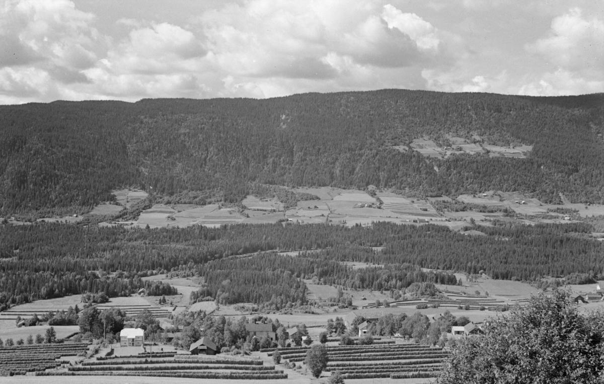 Utsikt fra Øverbygda i Østre Gausdal, gårder med hesjer