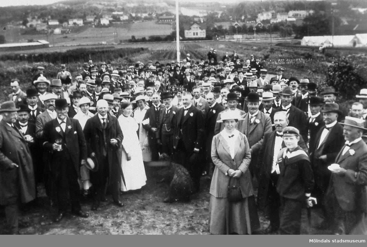 Handelsträdgården Annehill i Bosgården, Mölndal, år 1910. Trädgårdsmästare Jens Peter Petersén har besök av Sällskapet Hortikulturens Vänner. AF 10:1.