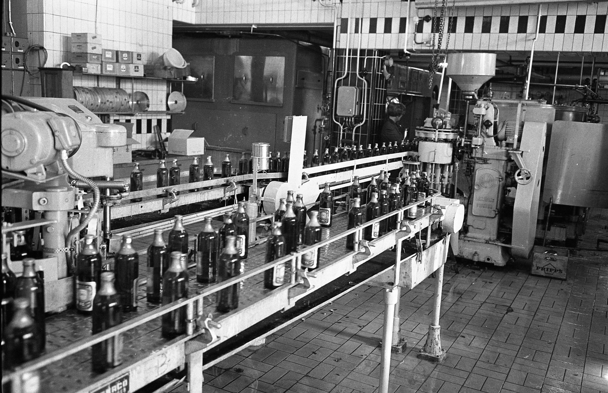 Arboga Bryggeri, premiär för mellanölet. Ölflaskor på löpande band, stora maskiner och en låda märkt Pripps. En anställd skymtar i bakgrunden.  Anläggningen var färdigbyggd 1899 och verksamheten startade 1 november samma år. 24 oktober 1980 tappades det sista ölet, på bryggeriet. Märket var Dart. Läs om Arboga Bryggeri i hembygdsföreningen Arboga Minnes årsbok 1981