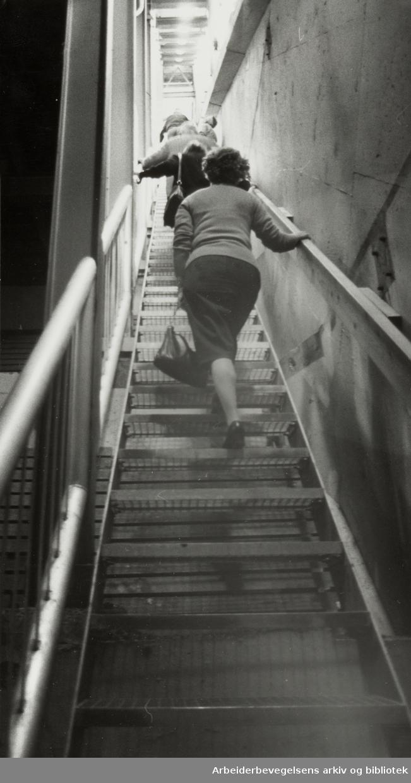 Holmenkollbakken. Trappen opp i tårnet. Juni 1981