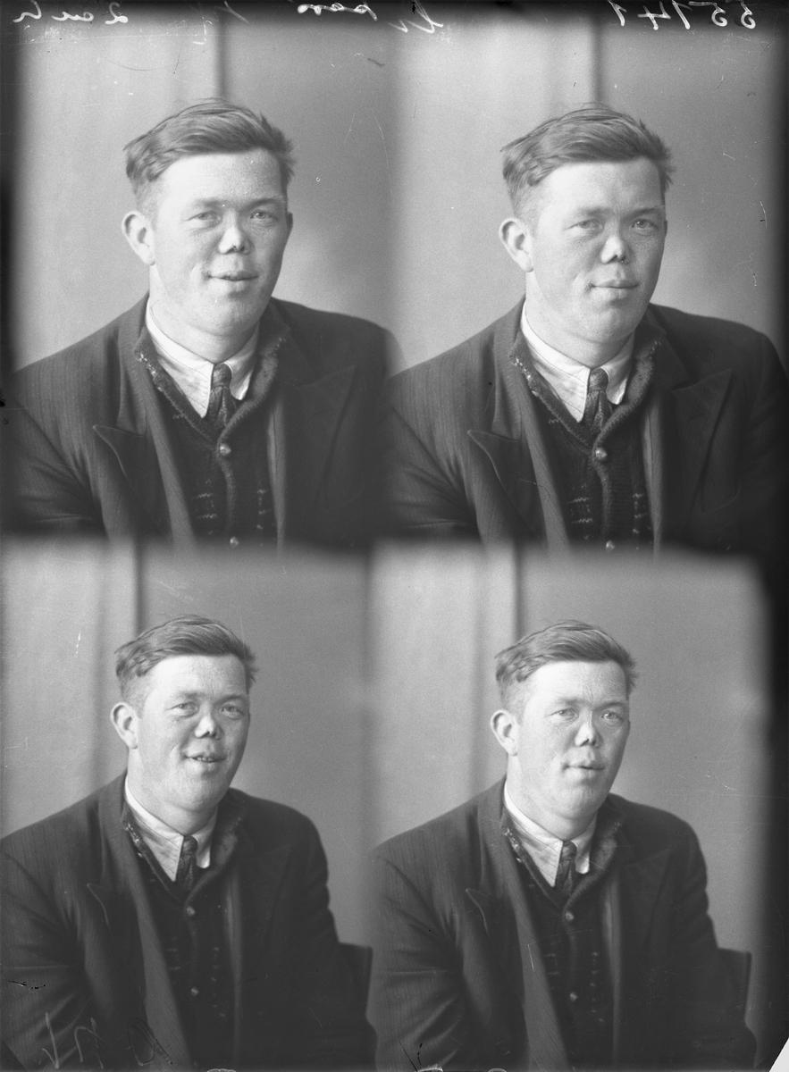 Portrett. Ung mørkhåret mann i mørk stripet dress, mørk genservest, hvit skjorte og mørkt slips.. Bestillt av Karl Strøm