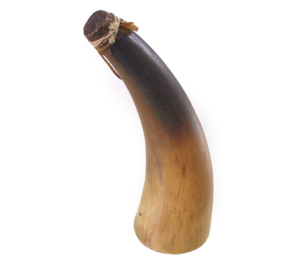 Lyst kuhorn, mørkere mot spissen. Smekkert, i tuppen overbundet med dyretarm, tynn hyssing. Tilstand: god.
