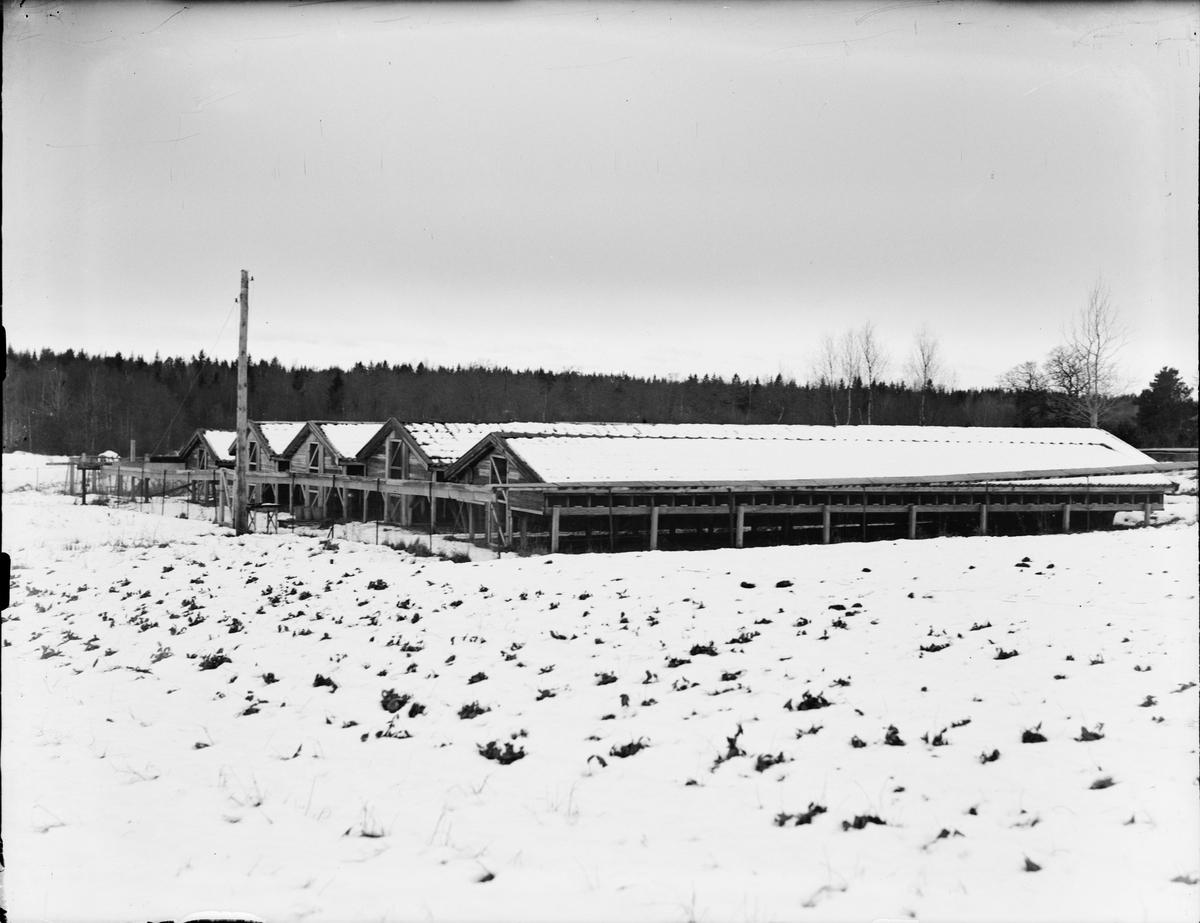 """""""Rävgårdar"""", Östhammar, Uppland"""