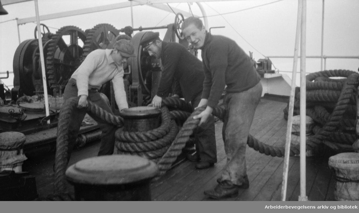Hvalfangere. Arbeid på dekk, 1930-tallet. Ukjent sted.