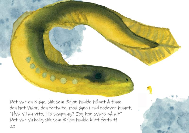 Boken handler om en småfortvilet istidskreps, som lever et spennende liv i Haldenvassdraget. Ørjan møter mange på sin ferd, blant annet Engebret Edelkreps og ålen Bjørg E. Langen.