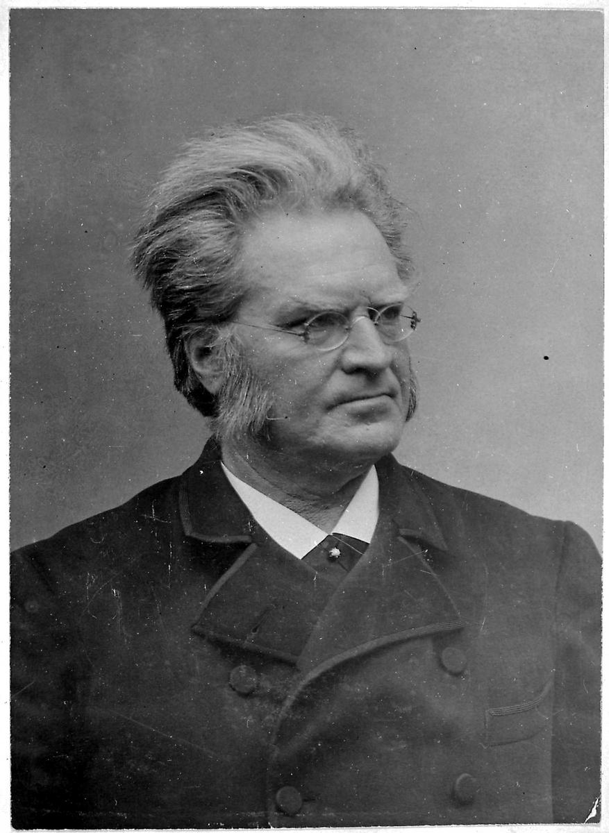 Bjørnstjerne Bjørnson, portrett