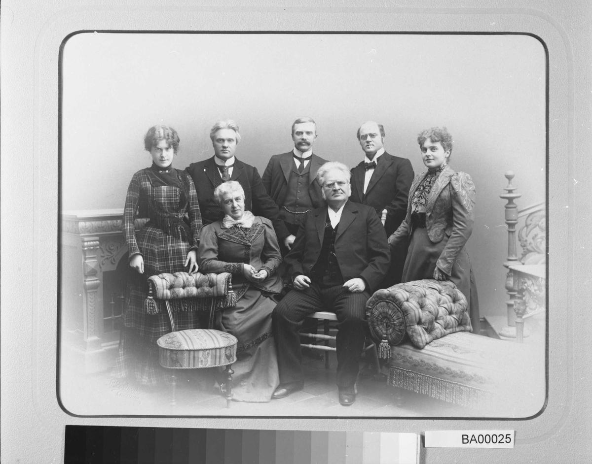 Bjørnson, familie,