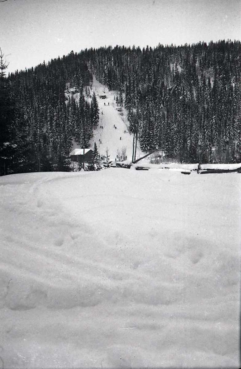 Landskap, hoppbakke, snø