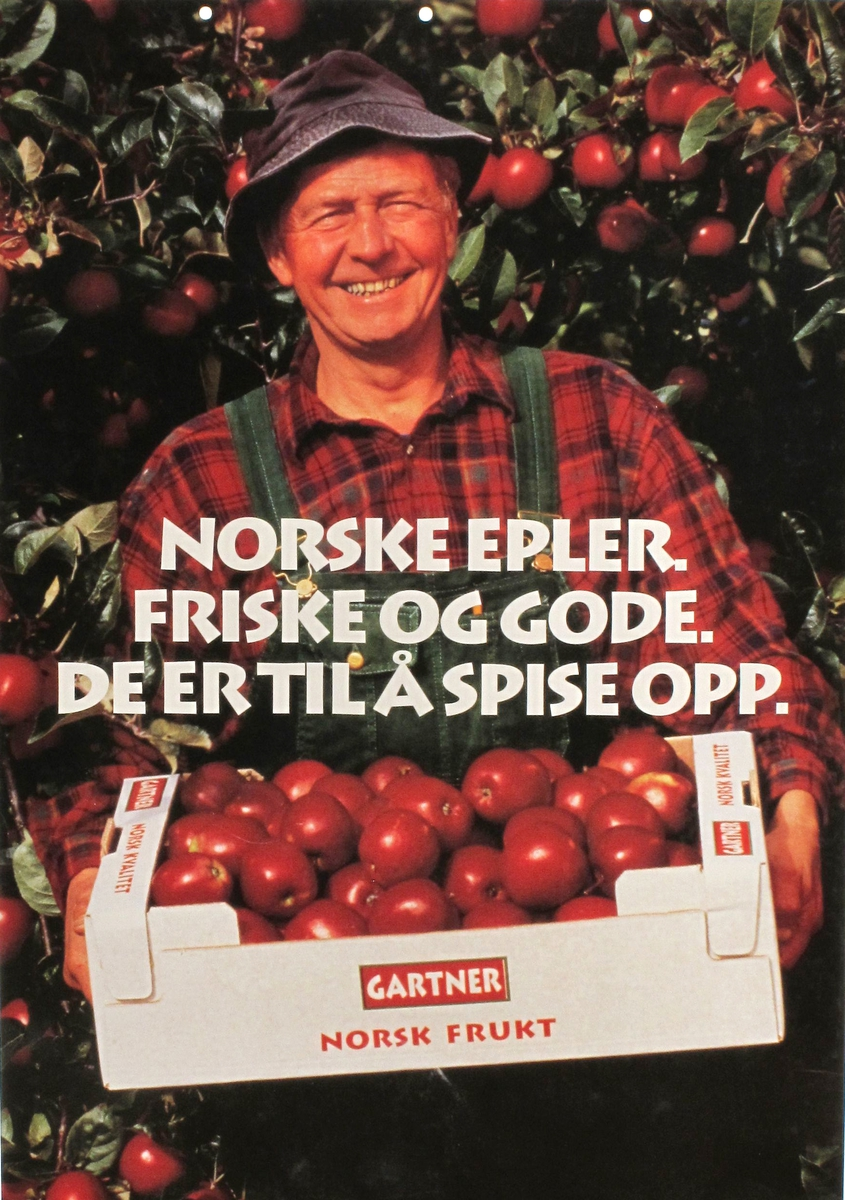 Eple og pære på en side, gartneren med eplekasse på andre siden.