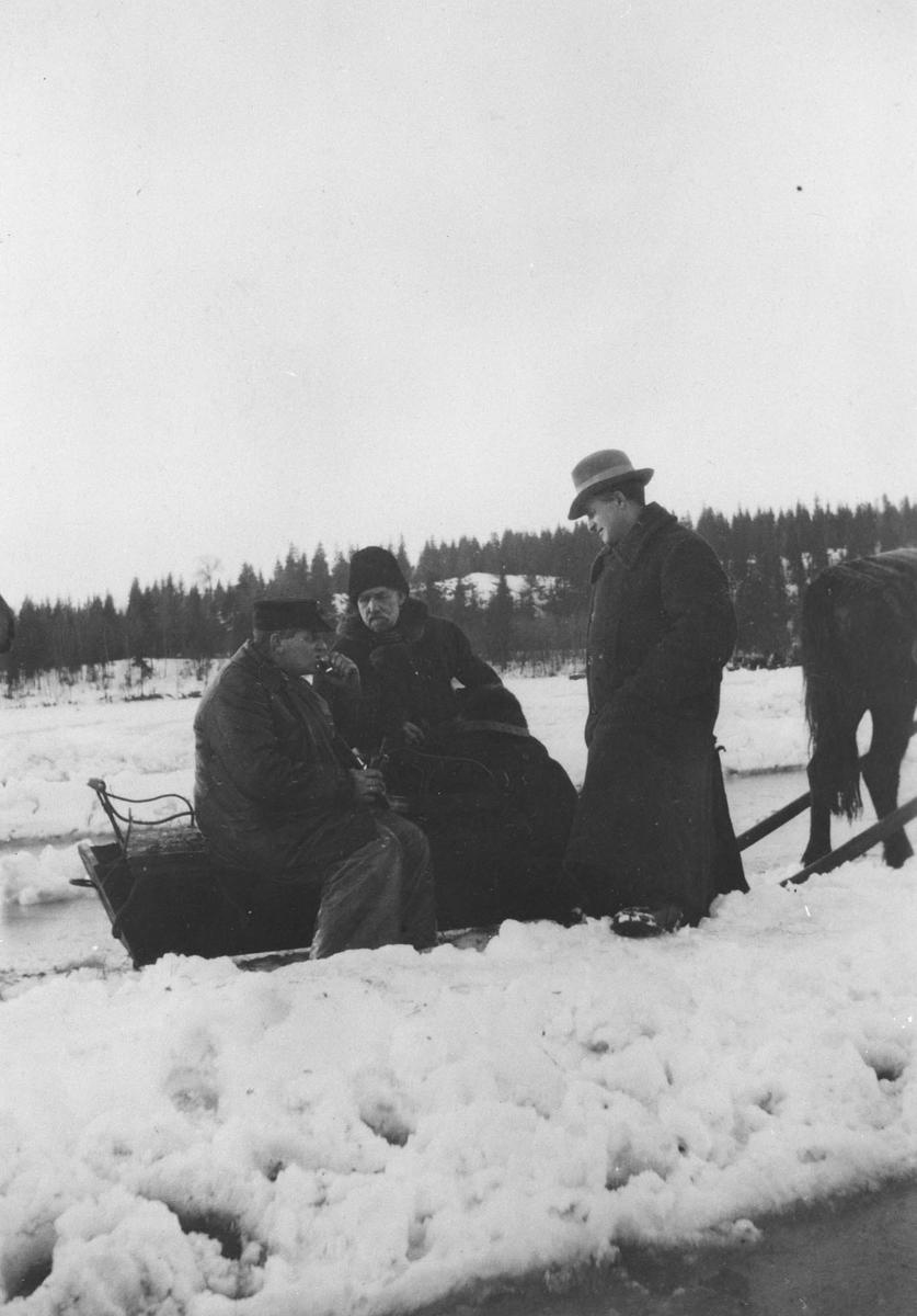 Travkjøring på isen.