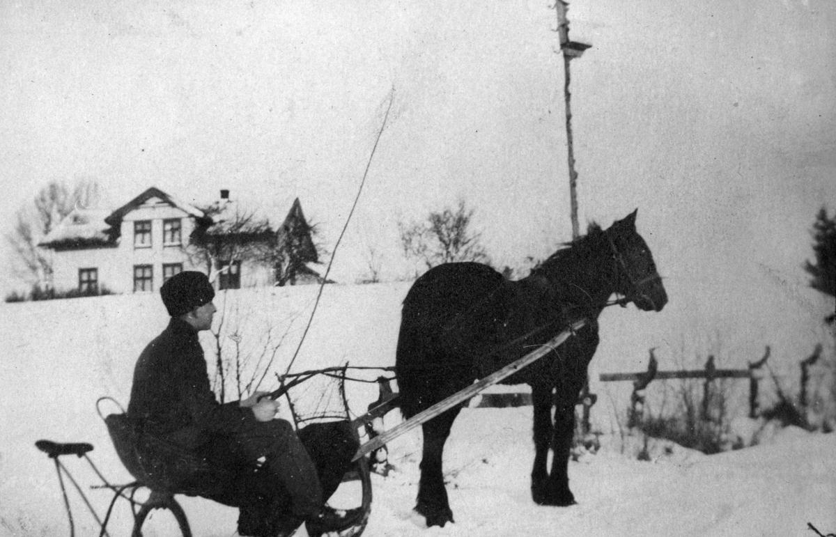 Sigurd Merli med hest og spisslede.