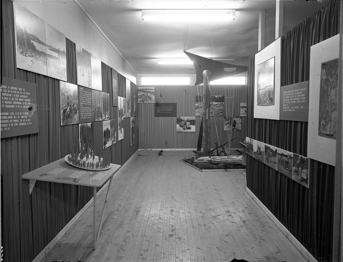 Fra Eidsvoll Bygdeutstilling i 1955. Om skogsdrift.