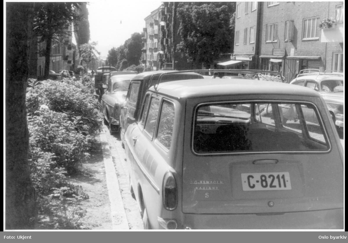 Busk-beplantning langs brosteinskant. Parkerte biler. Leketøysbutikk. (Samme gata som på bilde A-20145 / Uag / 0005 / 001.) Sannsynlig fra 1960-tallet.