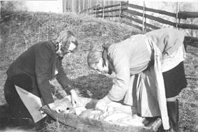 GRISSLAKTING, TINA ANDERSEN, MARTHE FROGNER RENSER TARMER I TRAU, FROGNER