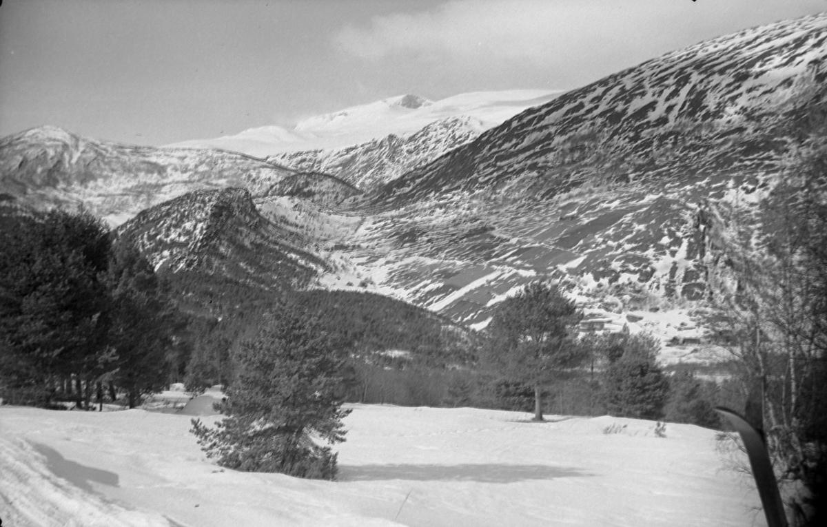 Skitur til Jotunheimen. Bøverdalen og Hestbrepiggene