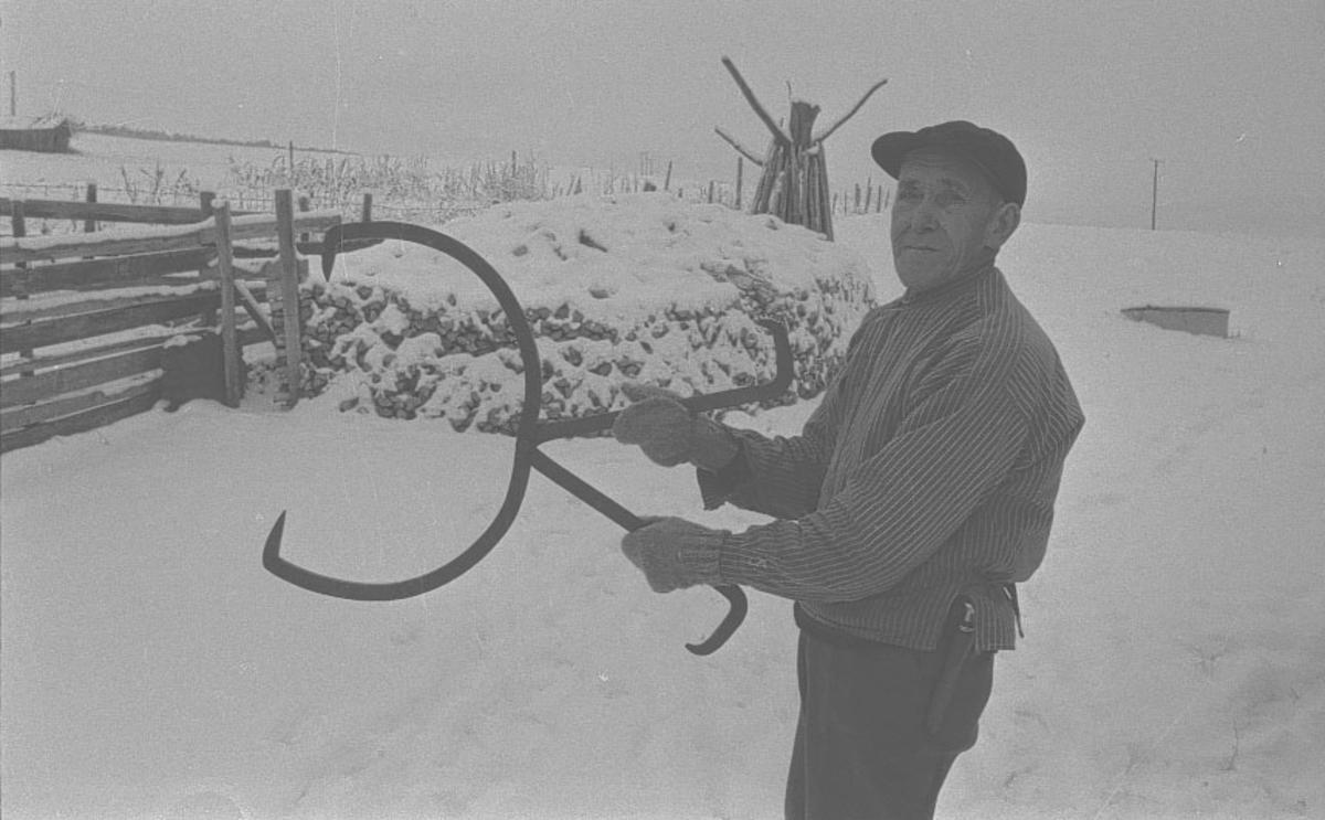 Folldal Portrett, Mann med tømmersaks