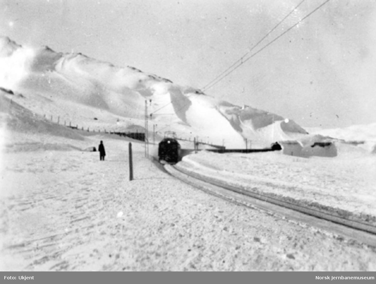 Malmtog mellom Bjørnfjell og Søsterbekk