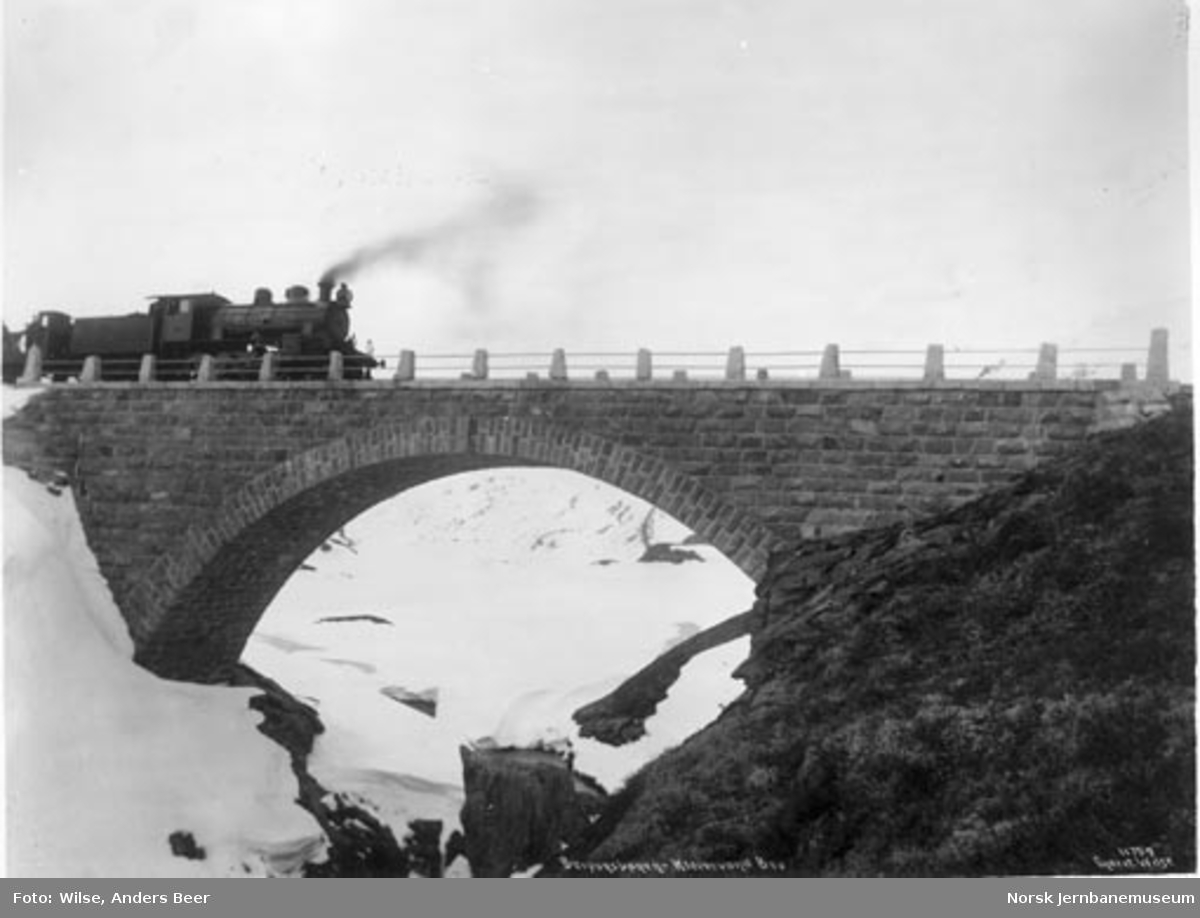 Damplokomotiv type 22 med sporrenser på Kleva bru