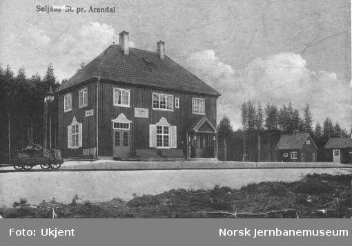 Seljås stasjon