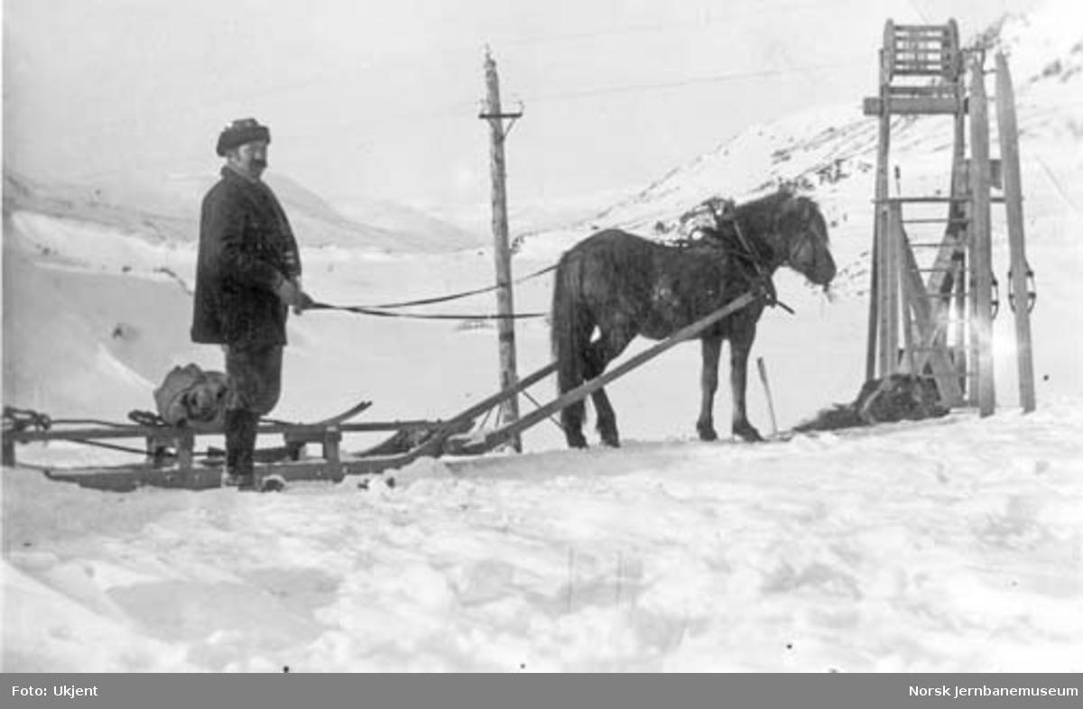 Hest med slede ved Lågheller på Bergensbaneanlegget