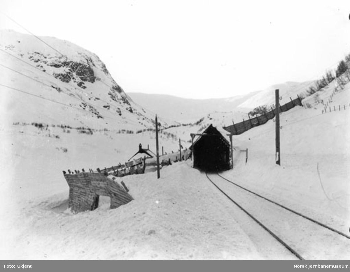 Linjeparti ved Langevassosen vokterbolig (pel 3980) med snøskjermer og snøoverbygg, sett vestover