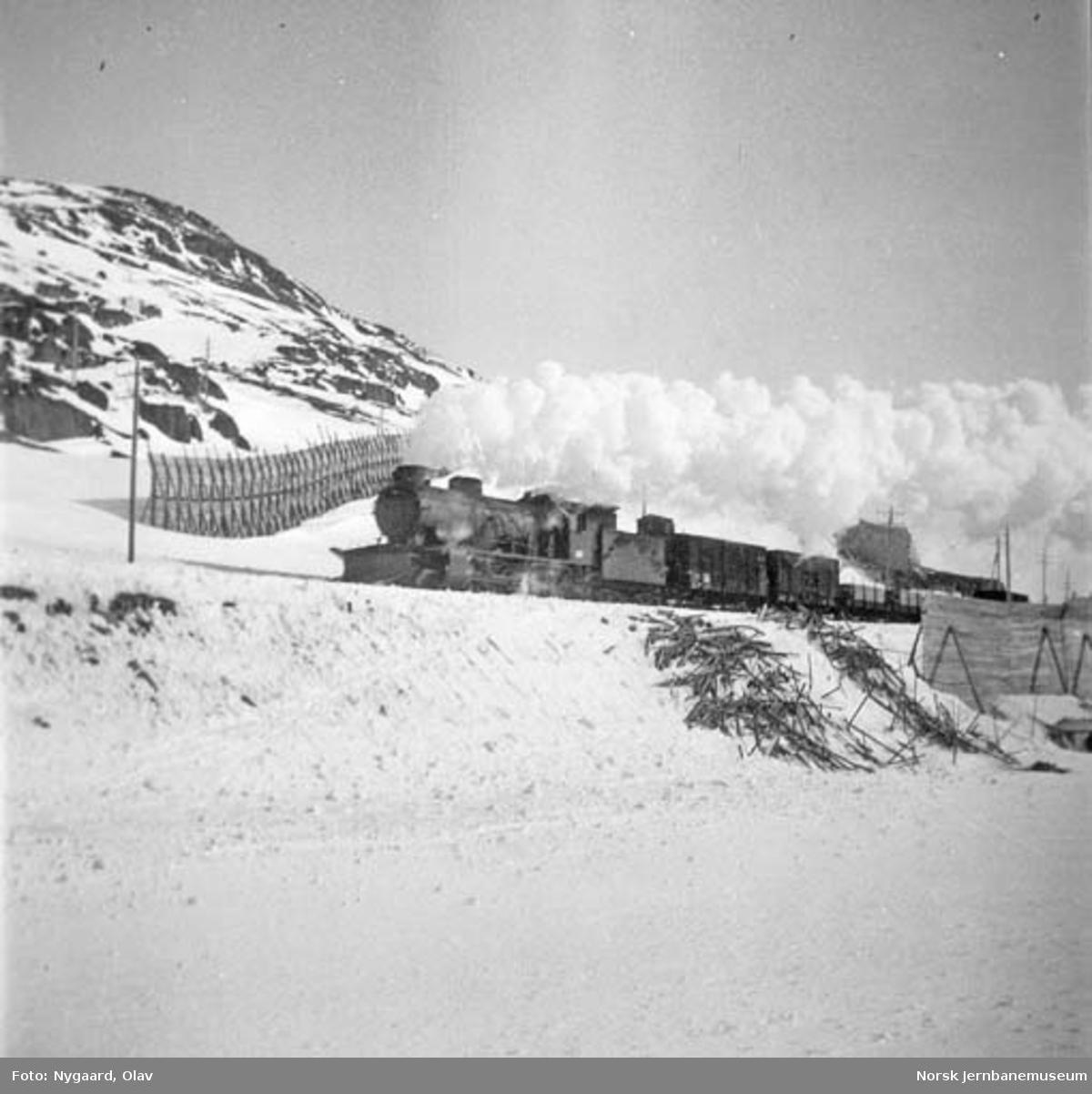 Damplokomotiv type 39a med godstog på Bergensbanen