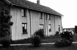 SkjoldenFra dr. Eivind S. Engelstads storgårdsundersøkelser