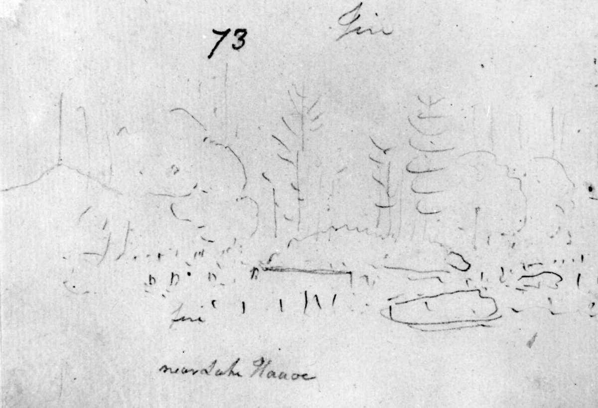 Håøya, Frogn, Akershus. Avfotografert blyantskisse av John Edy: Drawings Norway, 1800. Skissealbum utlånt av Deichmanske bibliotek.