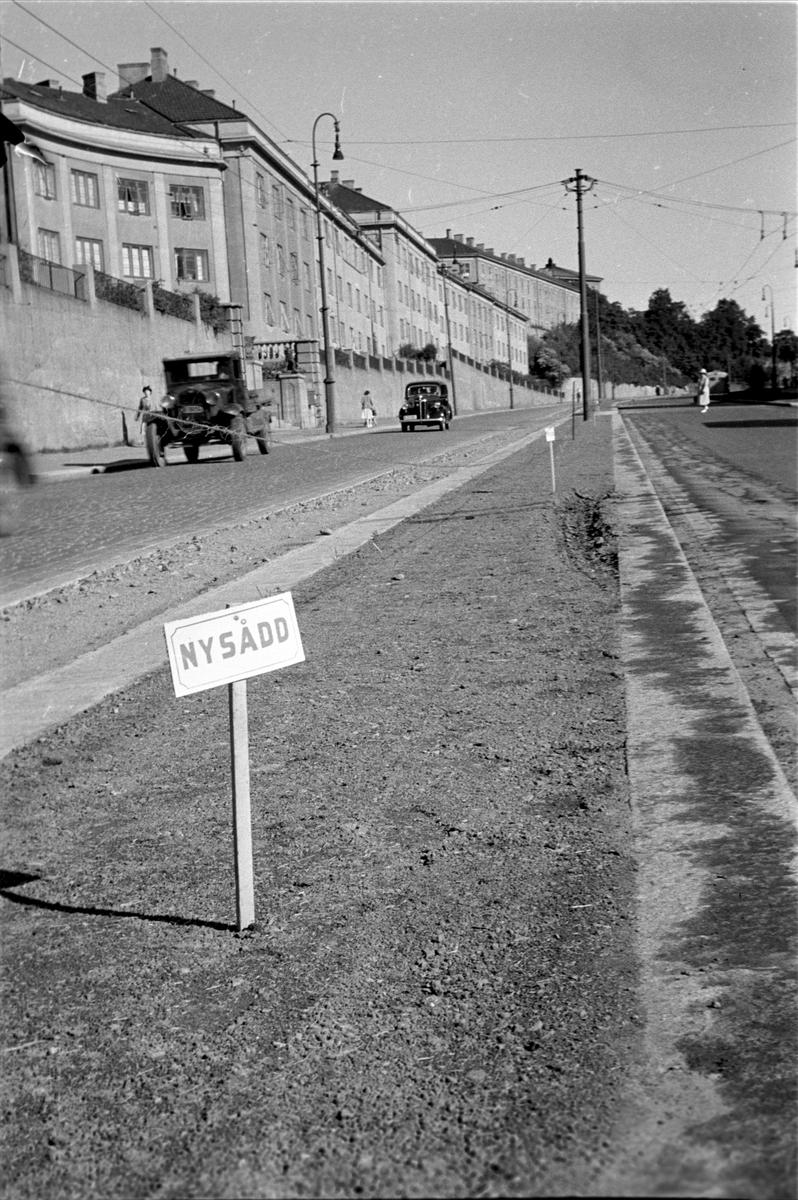 """Bybilde. Uelandsgate, Oslo. Midtrabatt med """"nysådd"""" skrevet på skilt."""