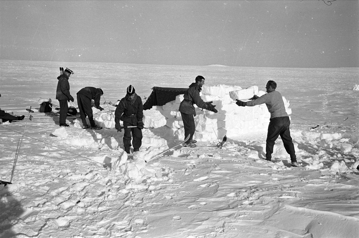 Gardister på fjelltur i Uvdalsfjellene, Nore og Uvdal, 13.03.1965.