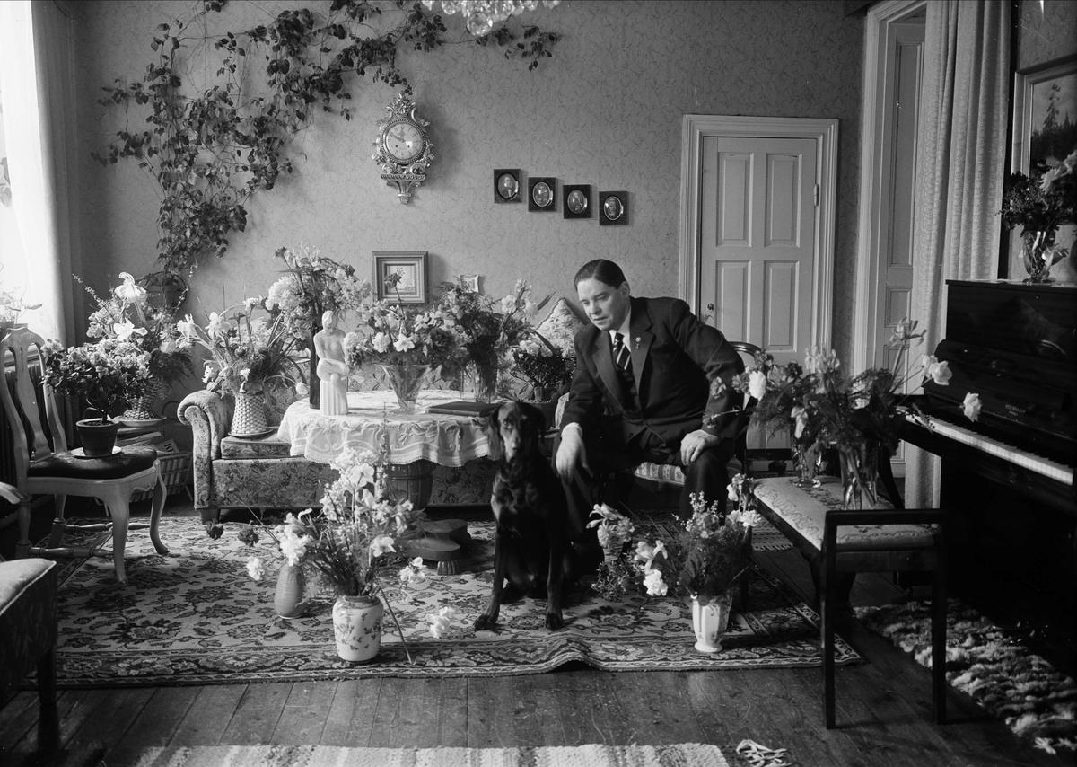 """Födelsedagsporträtt - handlare Nils Rapp """"med blommor och hund"""", Vaksalagatan 29, Uppsala mars 1954"""