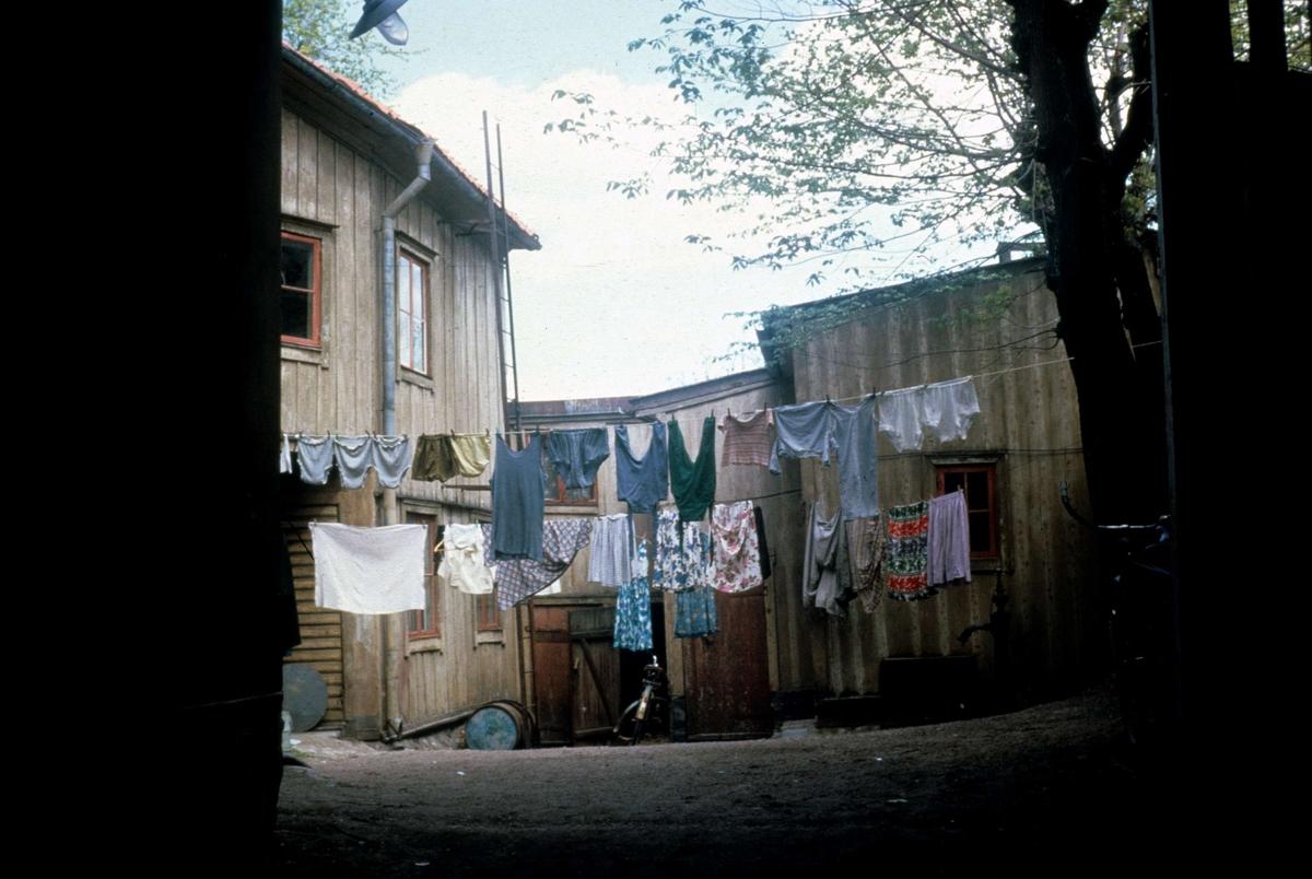 Tvätt på torkning, kvarteret S:t Niklas, Övre Slottsgatan 15, Uppsala 1964