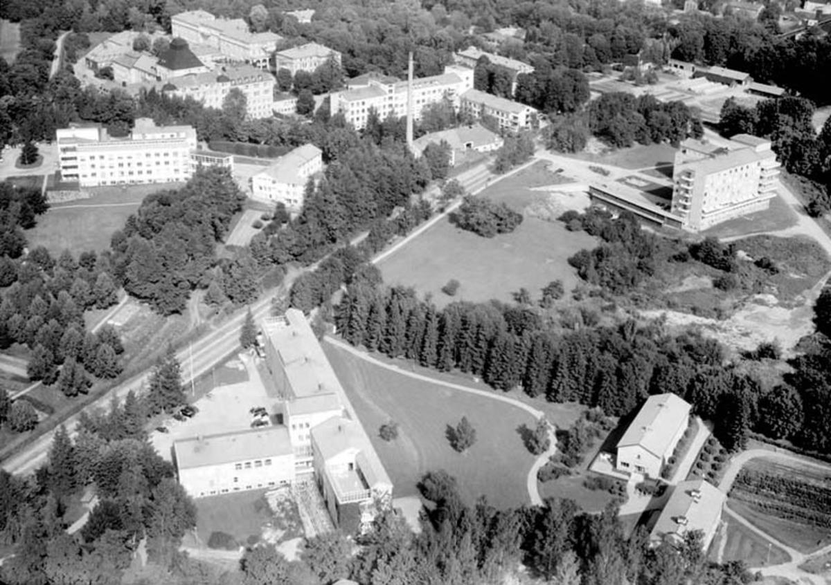 Flygfoto över Akademiska sjukhuset, Uppsala 1958
