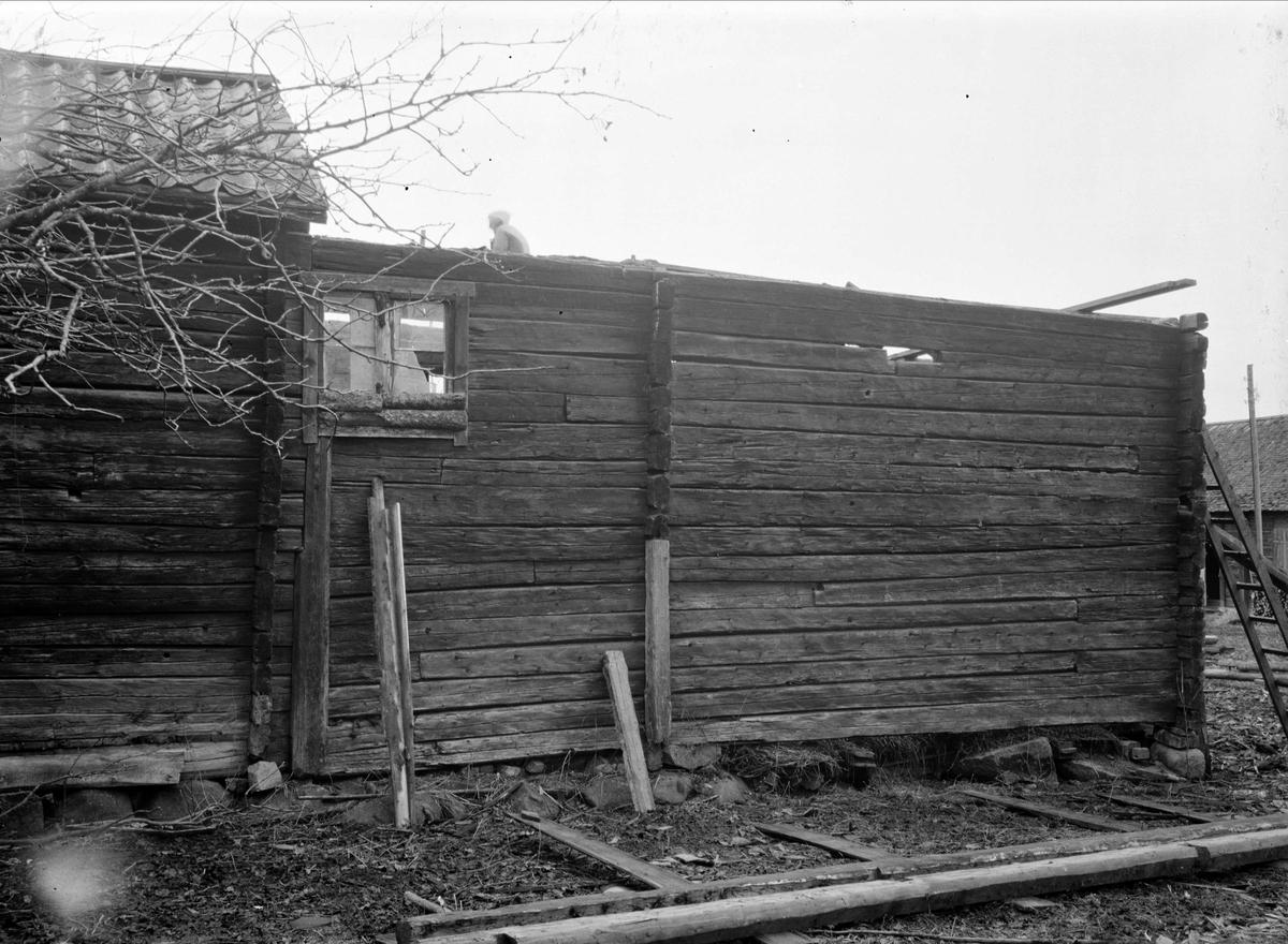 Loftbod och stall-länga - nu på friluftsmuseet Disagården - på ursprunglig plats i Gränby, Björklinge socken, Uppland