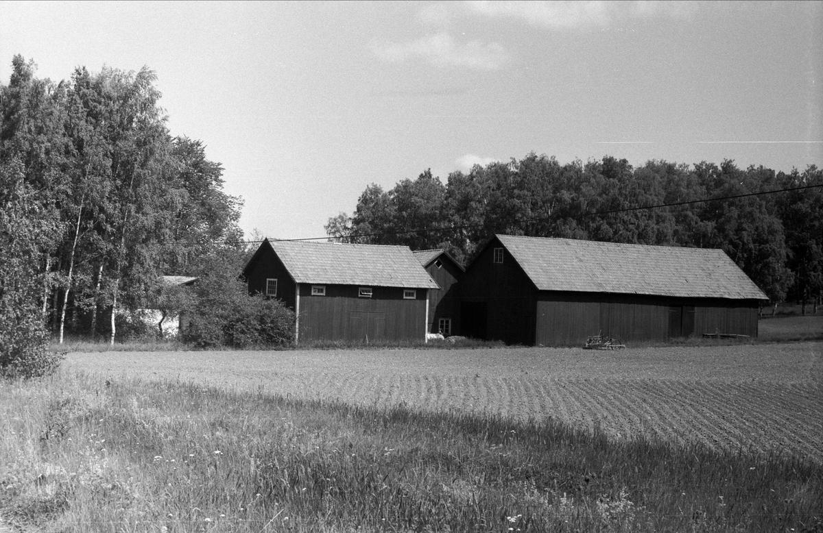 Vy över Drälinge 1:3, Björklinge socken, Uppland 1976